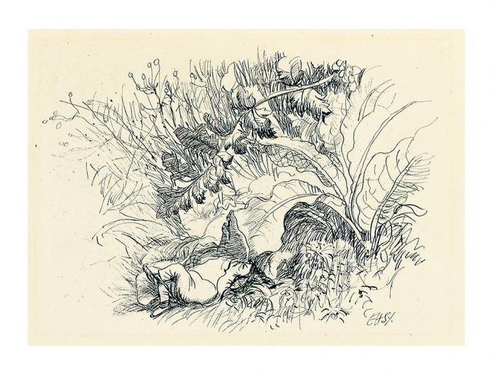 E・H・シェパードの画像 p1_16